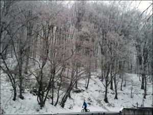 winter-run-1
